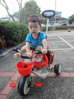 DSC05844_convert_20111015121233.jpg