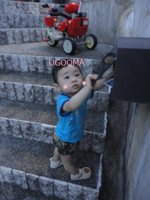 DSC05849_convert_20111015121246.jpg