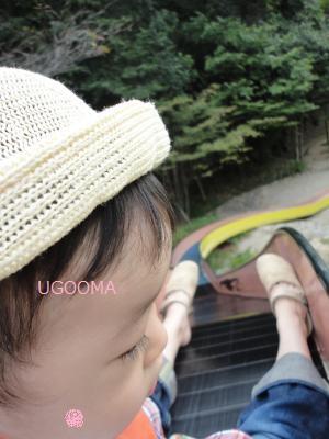 DSC06000_convert_20111015180957.jpg