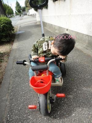 DSC06064_convert_20111022154204.jpg