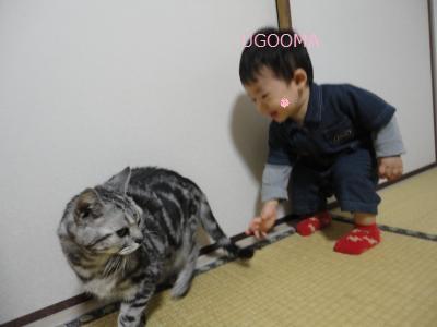 DSC06209_convert_20111029111706.jpg