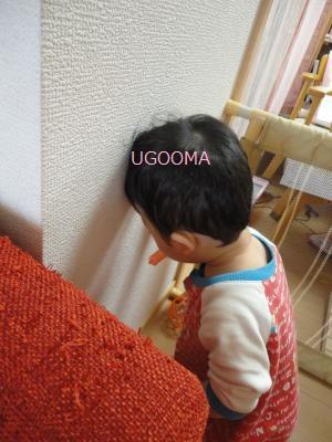 DSC06259_convert_20111101174613.jpg
