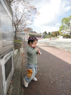 DSC06365_convert_20111105173432.jpg