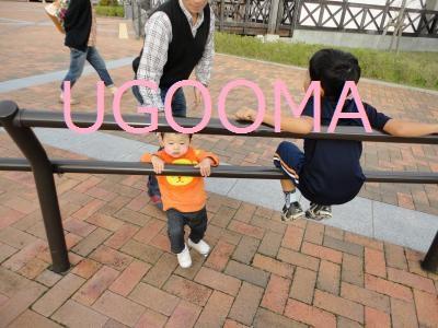 DSC06404_convert_20111107191538.jpg