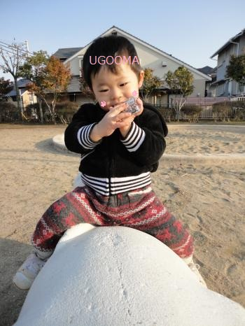DSC08050_convert_20120208143909.jpg