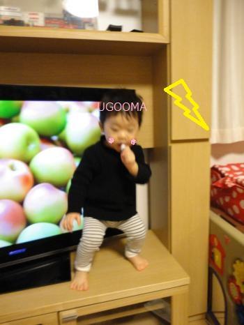 DSC08052_convert_20120211023234.jpg