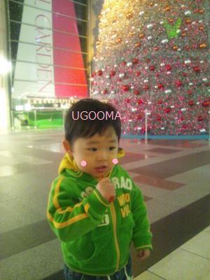 DSC_0145_convert_20120114170800.jpg