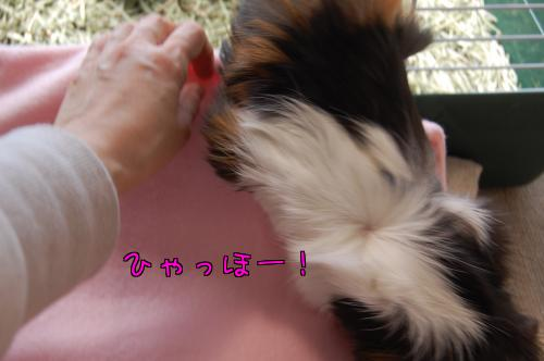 日光浴☆梅ちゃん編6