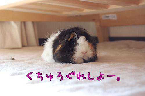 日光浴☆梅ちゃん編10