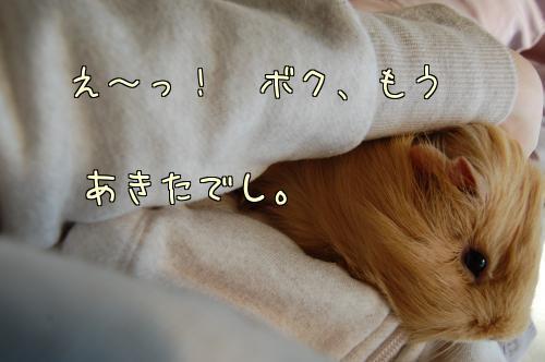 日光浴☆ハル編6