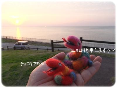 2013_01010021.jpg