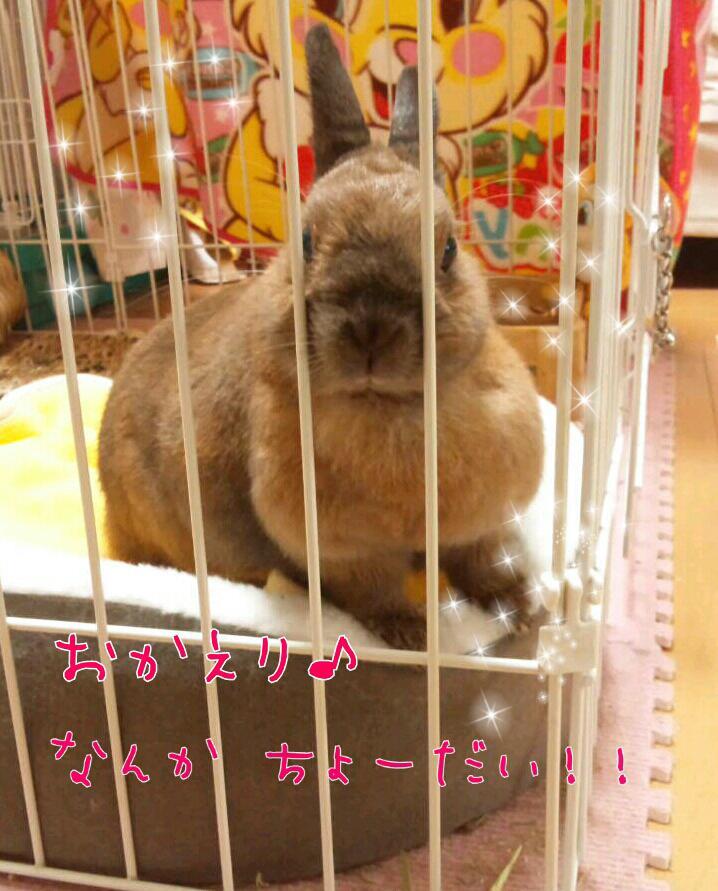 iphone_20120127045522.jpg