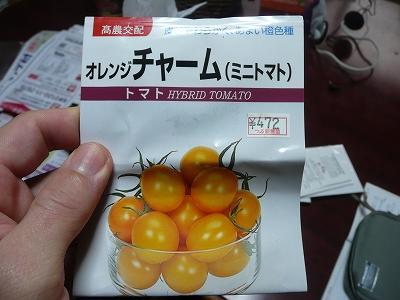 オレンジチャーム
