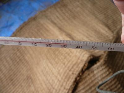 一次発酵開始6日後の温度