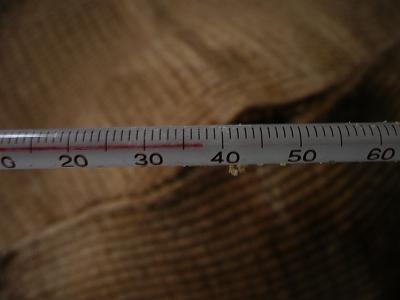 一次発酵開始9日後の温度