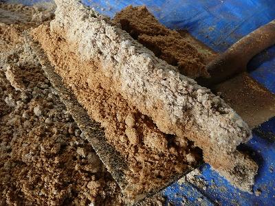一次発酵開始11日後のボカシ肥料を切り崩す