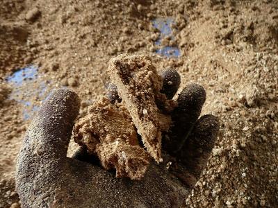 切り崩した一次発酵済みのボカシ肥料