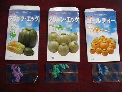ズッキーニの種たち