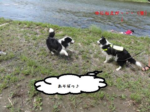 DSC07865.jpg