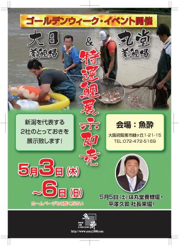 魚酔様5月号広告修正版.1jpg