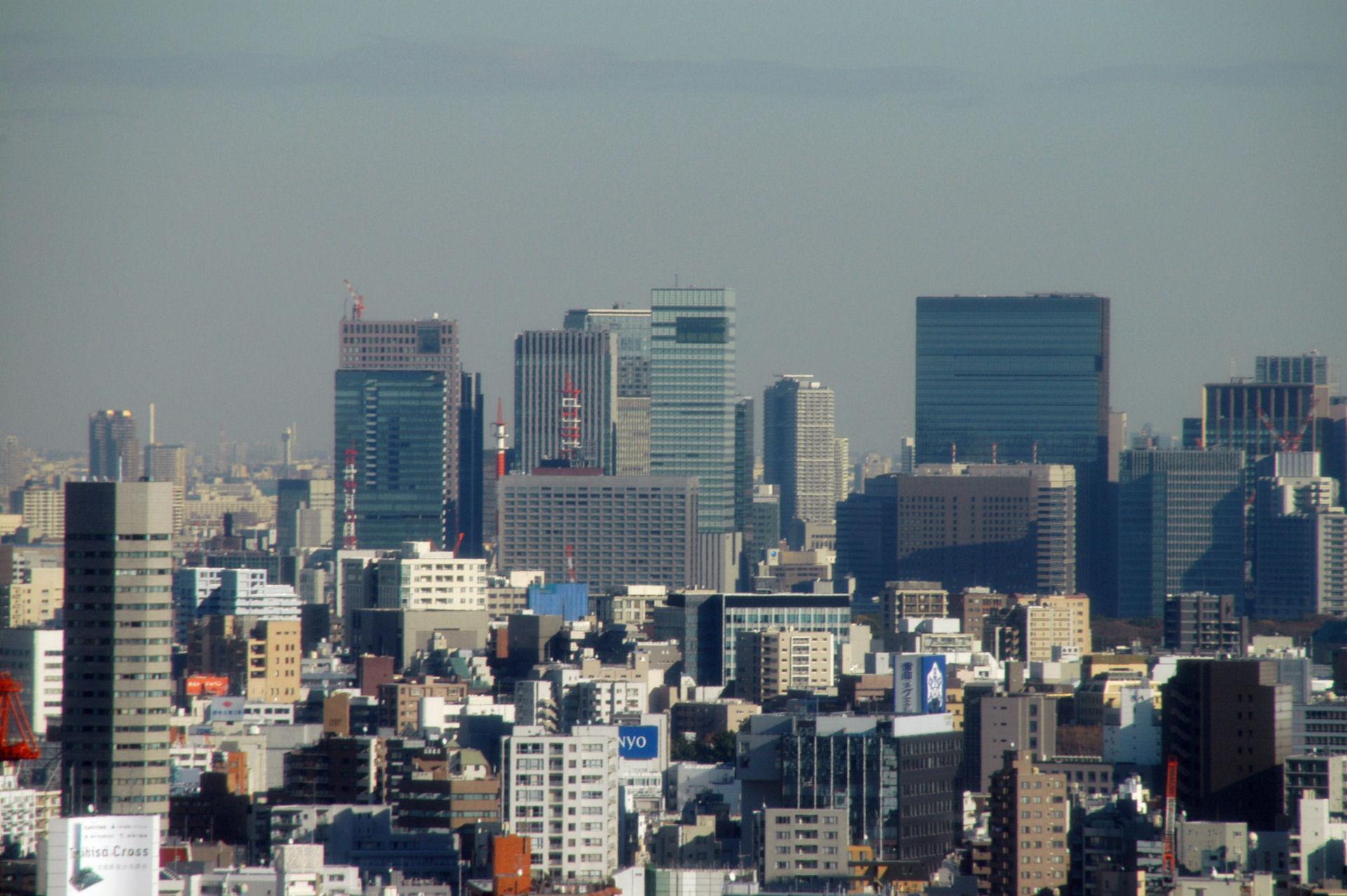 yomiuri13110241.jpg