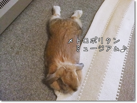 A5_20111208051004.jpg