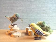 unico 鳥×2