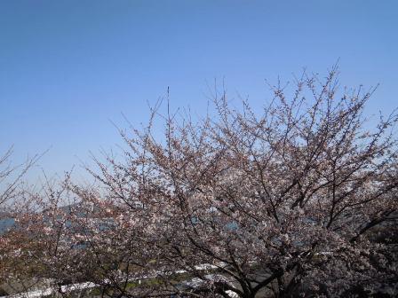 福島→山形→広島 114