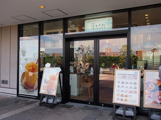 お店@Cafe COCONOHA