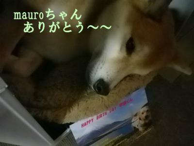 mauroさん