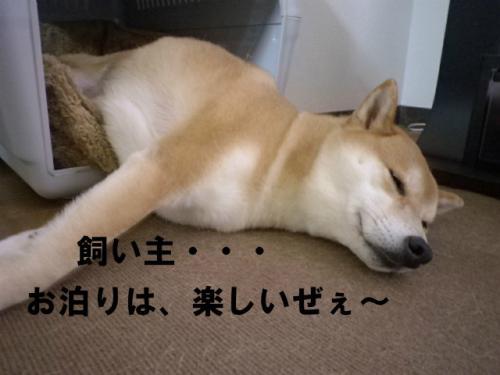 ウェルカム・ニッポン4