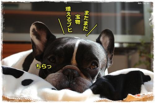 IMG_6044.jpg