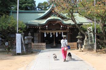 乃木神社参拝