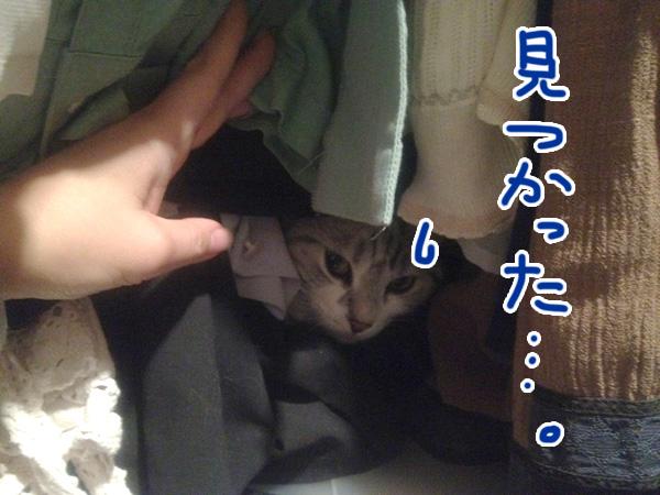 IMG_0373S.jpg