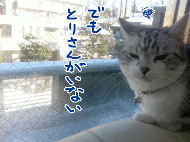 雪の日の文蔵2012_その2