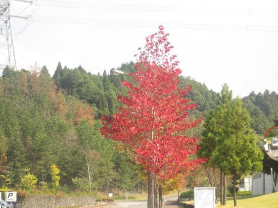 2012.10.27滋賀県1