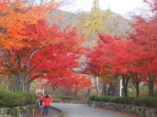 2012.11.24岐阜県・三重県