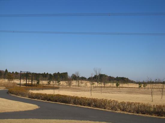 2012.12.13千葉県