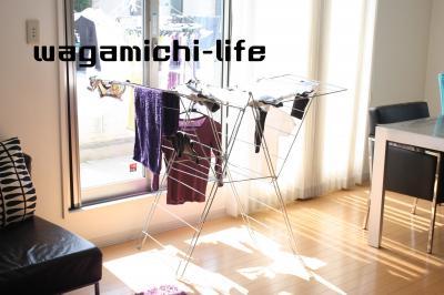 IMG_4061_convert_20120315142434.jpg