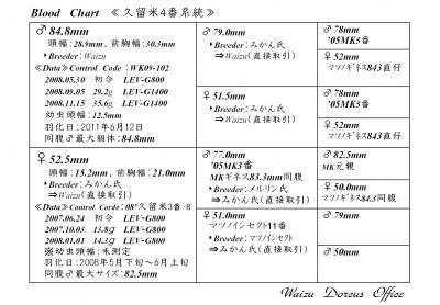 久留米4番系統図Web用900