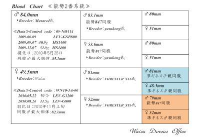 能勢2番系統図P7952
