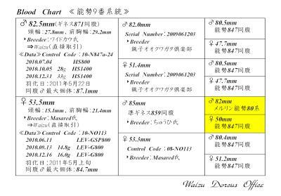 能勢9番系統図P8250