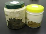通気加工菌糸ビン