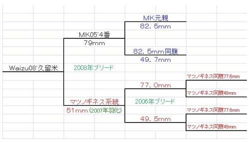 waizu久留米系統図