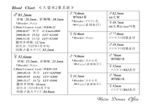 久留米2番系統図ブログ用