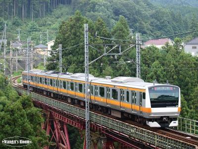 E233系 1612列車@軍畑~二俣尾