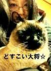 お膝猫~♪