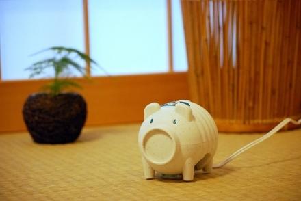 蚊取り豚 (1)
