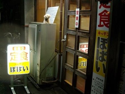 ぽぱい (4)