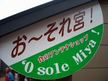 富士宮やきそば (24)